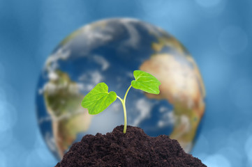 A sprout grows in soil. Our planet Earth is on background. Ecology concept. Elements of this image furnished by NASA.