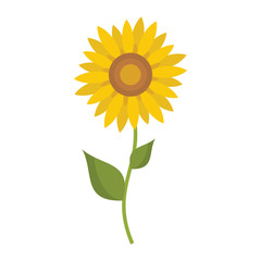 Sunflower icon in flat style vector illustration for design and web isolated on white