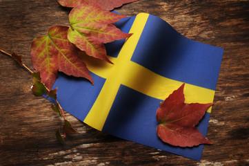 Sveriges flagga Flagge Schwedens Bandiera della Svezia Bandera de Suecia Drapeau de la Suède Flag of Sweden 瑞典國旗
