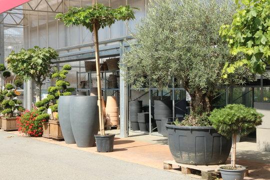 Garden Center, Gartencenter, Gärtnerei