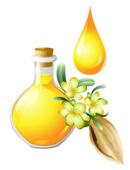 Oil of jojoba is in a bottle