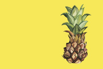Composition with watercolor hand drawn ananas. Yellow composition. Background for food packaging, cards posters.