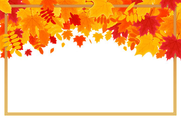 Autumn Background. Colorful Autumn Leaves on White Background with Frame and Space for Your Text. Vector Illustration for the Autumn Theme.