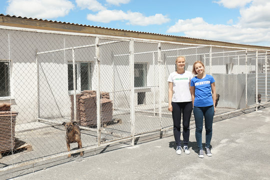 Female volunteers standing near shelter cages with homeless dogs