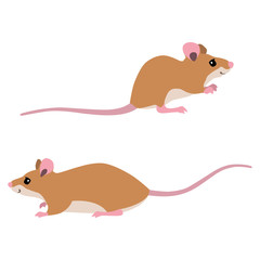 Vector illustration of sitting and walking mice isolated on white background