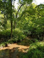 park stream