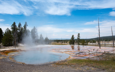 Steam rising from Fire Hole Springs on Firehole Lake Drive Yellowstone National Park, WY.