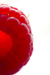 close up macro of a red rassberry
