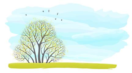 Иллюстрация с местом для текста с группой осенних деревьев на фоне неба и летающих птиц.