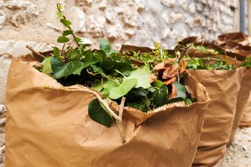 sac en papier recyclé pour déchets verts
