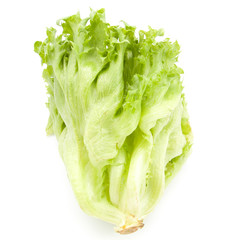 fresh lettuce leaves close up isolated