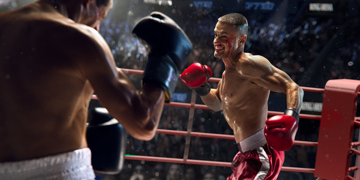 Boxer athlete in action. boxing ring. water drops and blood in face