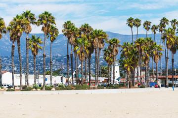 Palm trees in Santa Barbara seafront