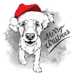 Cocker Spaniel in Santa Claus hat runs New Year's background. Vector illustration