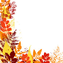 Vector background with colorful autumn leaves.