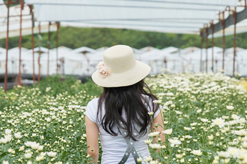 Asian girls aged 25-30 years, long black hair. Wearing a white hat standing in the middle of a field of white chrysanthemum.