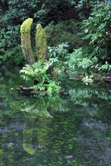 産山村 池山水源