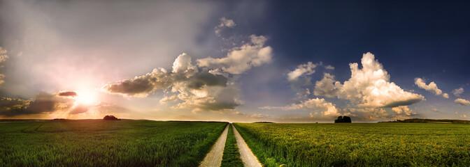 Feldweg in den Himmel Panorama