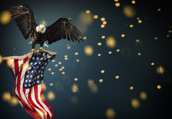 Wall Mural - Bald Eagle flying with American flag