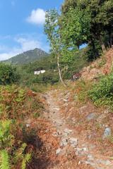 Sentier de Costa verde en haute Corse
