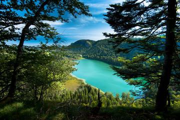 Blick auf den Lac de Bonlieu im französischen Jura