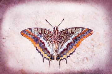 Foto auf Acrylglas Schmetterlinge im Grunge Grunge butterfly
