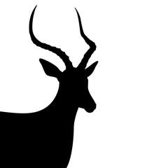 antelope  black silhouette