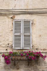 Vecchie finestre