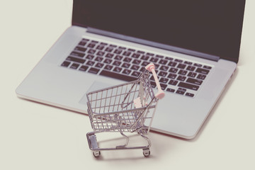 beautiful shopping cart and cool laptop on the wonderful pink background