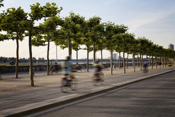 People ride bicycle in blurry motion by Rhine (Rhein) river. Tree line is also in the view. Image communicates lifestyle and culture of Dusseldorf.