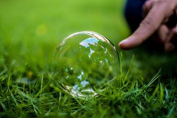 Bubble Close Up