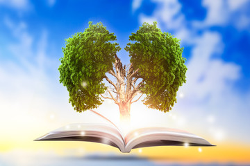 Conceptual with green tree of brain growing from book.