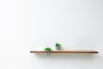 Wooden shelf and green plant on white concrete wall.