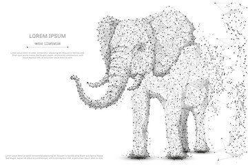 Elephant isolated from low poly wireframe on white background. African and indian animal. Vector abstract polygonal image mash line and point hands collect puzzle with an inscription. Digital graphics