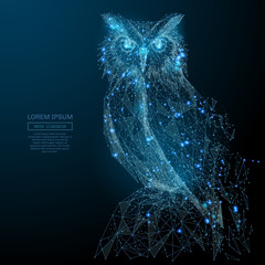 Fotobehang Uilen cartoon Owl isolated from low poly wireframe on dark background. Wild bird of prey. Vector polygonal image in the form of a starry sky or space, consisting of points, lines, and shapes in the form of stars