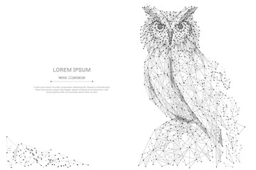 Owl isolated from low poly wireframe on white background. Wild bird of prey. Vector abstract polygonal image mash line and point hands collect puzzle with an inscription. Digital graphics
