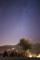 Milchstraße am Himmel, Baum und Berge im Vordergrund