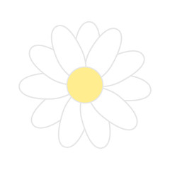Daisy flower illustration vector. White background.