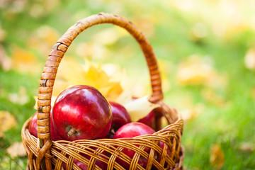 Beautiful fresh red apples