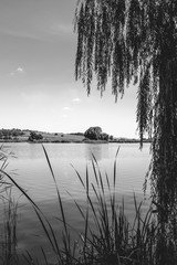Photo of nature around beautiful blue lake black and white