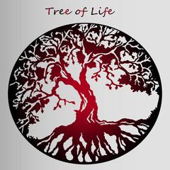 red sticker tree of life - beautiful idea of tattoo