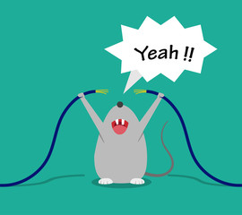 Bad rat happy after bite cable, vector cartoon