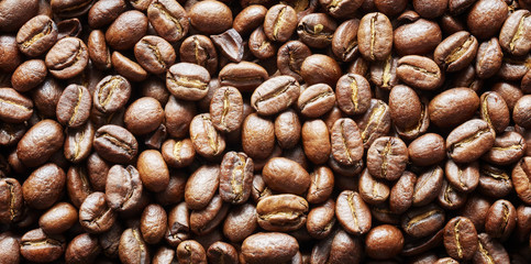Roasted coffee beans, natural food panoramic background.