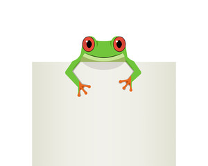 Red eye frog on top white paper, vector