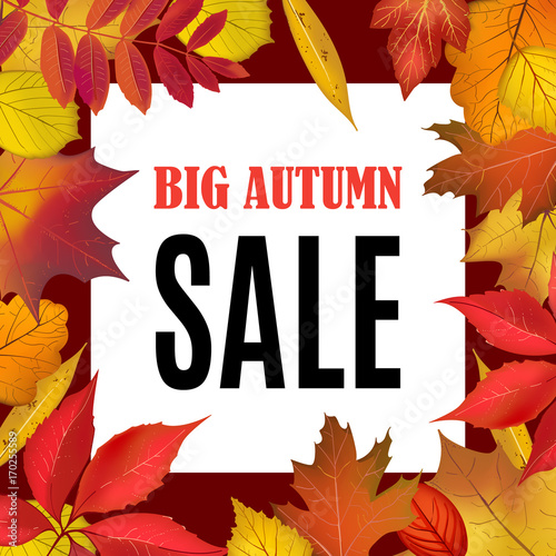 big autumn sale banner template with fall leaves border frame shop