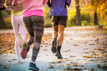 Group of friends in sportswear walking at the park on beautiful day.Autumn concept.Rear view.Only legs are visible. Wall mural