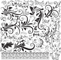 Decorative Swirls floral design Vector illustration