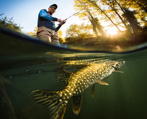 Fishing. Fisherman and pike, underwater view