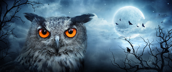 Poster Uil Angry Eagle Owl At Moonlight In The Spooky Forest - Halloween Scene