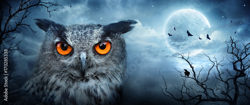 Wall mural Angry Eagle Owl At Moonlight In The Spooky Forest - Halloween Scene